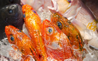 http://www.seguonews.it/pesce-privo-di-etichettatura-multe-per-7-mila-mazzarino-e-a-gela-e-sequestrati-16-chili-di-prodotti-ittici