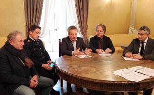 Randagismo, il Comune di Caltanissetta firma protocollo con i volontari. Previsti anche 460 euro per chi adotta un cane