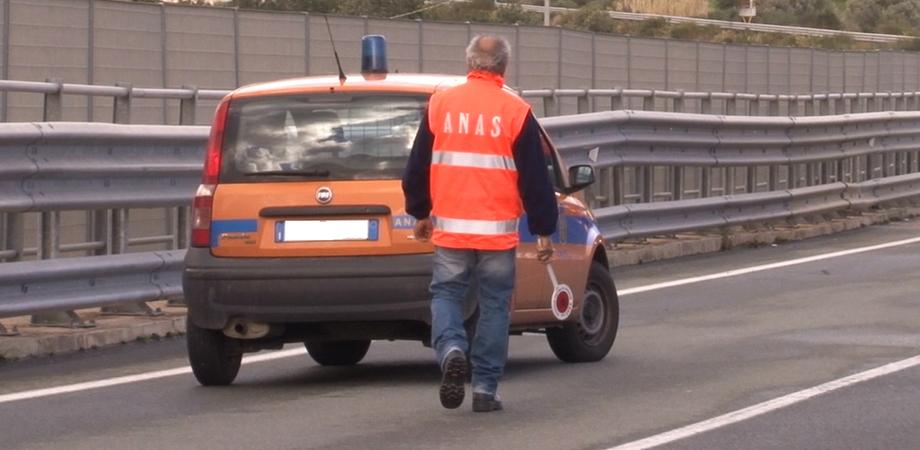 """Alberi pericolanti, chiusa la strada statale 122 """"Agrigentina"""" nel comune di Serradifalco"""