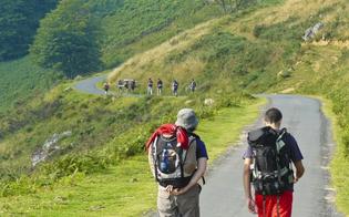 http://www.seguonews.it/il-cammino-di-santiago-incontro-a-gela-per-conoscere-tappe-lunghezze-e-chilometri