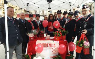 http://www.seguonews.it/volontari-dellaism-e-associazione-carabinieri-insieme-a-gela-per-raccogliere-fondi-per-la-sclerosi-multipla
