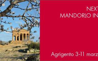 http://www.seguonews.it/mandorlo-in-fiore-express-istituito-un-treno-speciale-per-raggiungere-la-valle-dei-templi