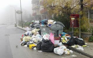 http://www.seguonews.it/rifiuti-nuova-batosta-in-arrivo-per-i-cittadini-m5s-la-regione-non-scarichi-sui-siciliani-i-propri-fallimenti-sulla-differenziata