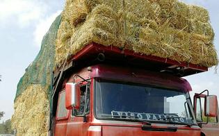http://www.seguonews.it/caltanissetta-trasportava-fieno-illegalmente-con-il-mezzo-privo-di-revisione-multa-da-4-mila-euro-per-un-camionista
