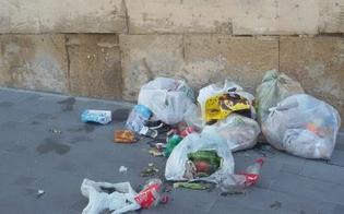 http://www.seguonews.it/caos-differenziata-a-caltanissetta-cumuli-di-rifiuti-in-centro-storico-multe-anche-da-600-euro