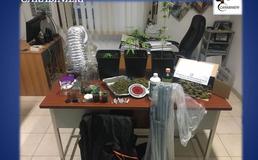 San Cataldo, a casa con la droga e gli arnesi per lo spaccio: 38enne arrestata