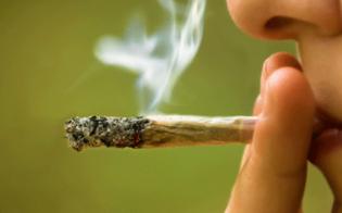 https://www.seguonews.it/a-casa-con-oltre-100-chili-di-marijuana-era-pronta-ad-essere-spacciata-arrestato-un-licatese