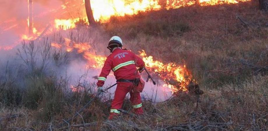 Caltanissetta, in prefettura tavolo per contrastare gli incendi boschivi. C'è anche una App per i cittadini