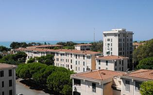 http://www.seguonews.it/gela-comitato-di-quartiere-di-macchitella-verso-il-voto-al-via-il-rinnovo-delle-cariche