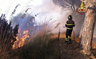 http://www.seguonews.it/domenica-di-fuoco-in-provincia-di-caltanissetta-decine-gli-interventi-dei-vigili-del-fuoco-
