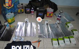 http://www.seguonews.it/marijuana-in-casa-vasi-lampade-e-trasformatori-27enne-gelese-arrestato-dalla-polizia