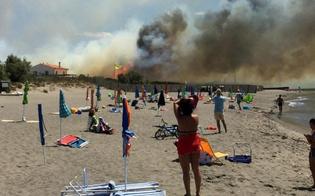 http://www.seguonews.it/in-sicilia-e-gia-allarme-incendi-190-interventi-dei-vigili-del-fuoco-in-un-solo-giorno