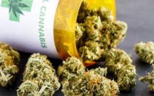 """San Cataldo, domani un convegno dal titolo """"Cannabis: facciamo chiarezza"""""""