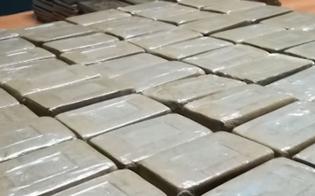 https://www.seguonews.it/a-ravenna-sequestrati-800-chili-di-droga-2-arrestati-uno-e-di-marianopoli