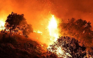 La Sicilia devastata dai roghi, Italia Nostra: