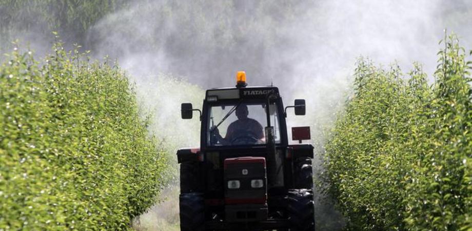Investito dal trattore del nonno: muore un bimbo di 6 anni