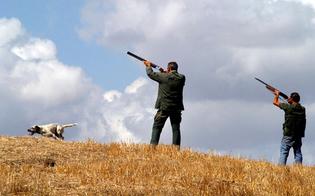 http://www.seguonews.it/caccia-il-tar-accoglie-il-ricorso-del-wwf-sospesa-la-caccia-al-coniglio-anche-in-provincia-di-caltanissetta