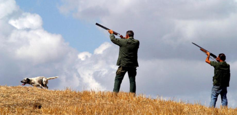 Caccia, il Tar accoglie il ricorso del Wwf, sospesa la caccia al coniglio anche in provincia di Caltanissetta