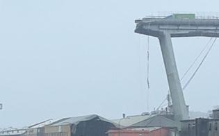https://www.seguonews.it/genova-crolla-il-ponte-morandi-auto-e-persone-sotto-le-macerie