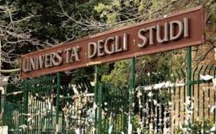 http://www.seguonews.it/universita-scioperi-dei-docenti-mettono-a-rischio-conseguimento-borse-di-studio