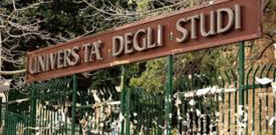 Università, scioperi dei docenti mettono a rischio conseguimento borse di studio