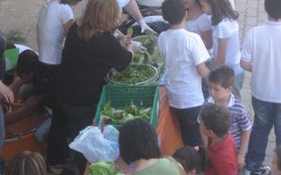 http://www.seguonews.it/educazione-alimentare-incontro-alla-scuola-rodari-di-caltanissetta