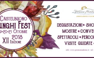 Castelbuono, ecco il programma completo della XII edizione di Funghi Fest