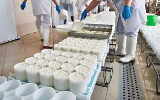 Gela, in carcere un corso dedicato alla lavorazione del latte e dei suoi derivati