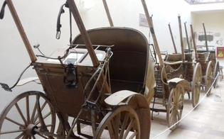 http://www.seguonews.it/niscemi-tutto-pronto-per-linaugurazione-del-museo-civico