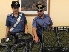 Gela, trovati con sette chili di marijuana: arrestati padre e figlio