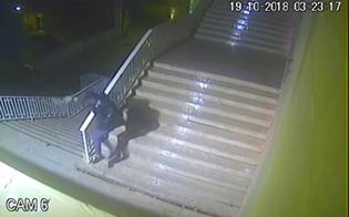 http://www.seguonews.it/gela-incendio-il-bar-belvedere-incastrato-dalle-immagini-di-videosorveglianza