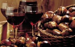 http://www.seguonews.it/caltanissetta-a-gibil-habib-il-comitato-di-quartiere-organizza-la-festa-di-san-martino
