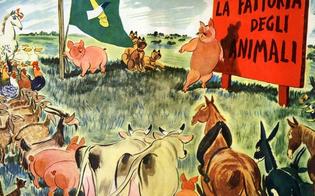 http://www.seguonews.it/caltanissetta-al-liceo-volta-drama-workshop-con-la-fattoria-degli-animali-di-george-orwell