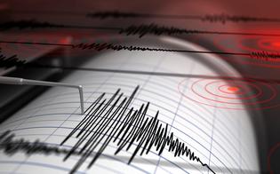 https://www.seguonews.it/sciame-sismico-nel-catanese-nella-notte-di-san-silvestro-la-terra-torna-a-tremare-la-scossa-piu-forte-e-stata-38-della-scala-richter
