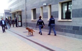 http://www.seguonews.it/erano-entrati-di-nascosto-al-tribunale-di-gela-cinque-giovani-si-presentano-spontaneamente-al-commissariato-e-confessano