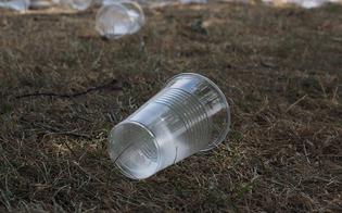 http://www.seguonews.it/plastica-usa-e-getta-no-grazie-a-caltanissetta-petizione-e-campagna-pubblica-contro-luso-e-la-dispersione-nellambiente-degli-oggetti-monouso-in-plastica