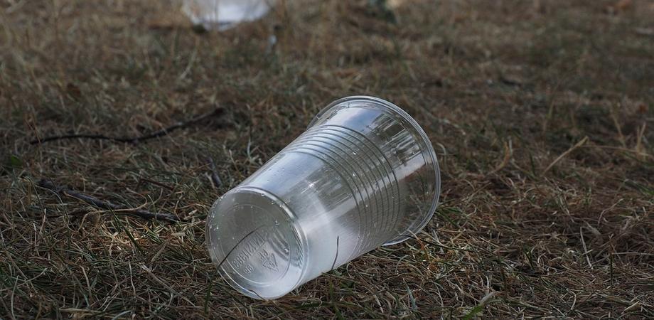 """""""Plastica usa e getta? No grazie"""": a Caltanissetta petizione e campagna pubblica contro l'uso e la dispersione nell'ambiente degli oggetti monouso in plastica"""
