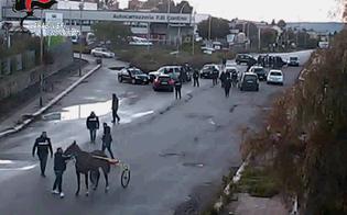 http://www.seguonews.it/corsa-clandestina-di-cavalli-a-caltanissetta-fantini-affiancati-dai-motorini-trovati-3400-euro-contanti-e-un-biglietto-con-le-scommesse