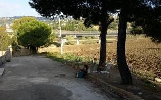 http://www.seguonews.it/business-sui-migranti-la-nissena-liliana-pasqualino-torna-in-liberta-revocata-la-misura-cautelare