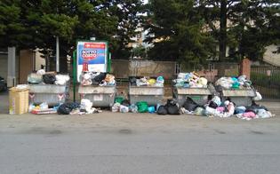 http://www.seguonews.it/caltanissetta-emergenza-rifiuti-in-via-amari-residenti-e-commercianti-presentano-un-esposto