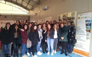 http://www.seguonews.it/trentaquattro-studenti-dellipsia-galilei-di-caltanissetta-andranno-a-bruxelles-per-conoscere-da-vicino-le-istituzioni-europee