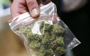 https://www.seguonews.it/andava-in-giro-con-la-marijuana-arrestato-a-san-cataldo-un-21enne-aveva-160-grammi-di-stupefacenti