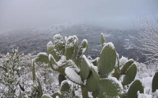 http://www.seguonews.it/freddo-in-sicilia-neve-sopra-i-500-metri-venti-di-tramontana-nelle-zone-interne