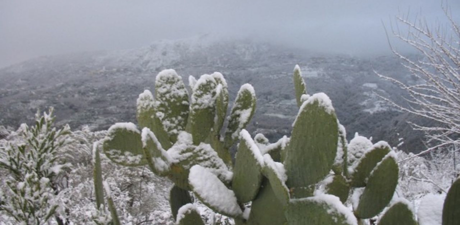Freddo in Sicilia, neve sopra i 500 metri. Venti di tramontana nelle zone interne