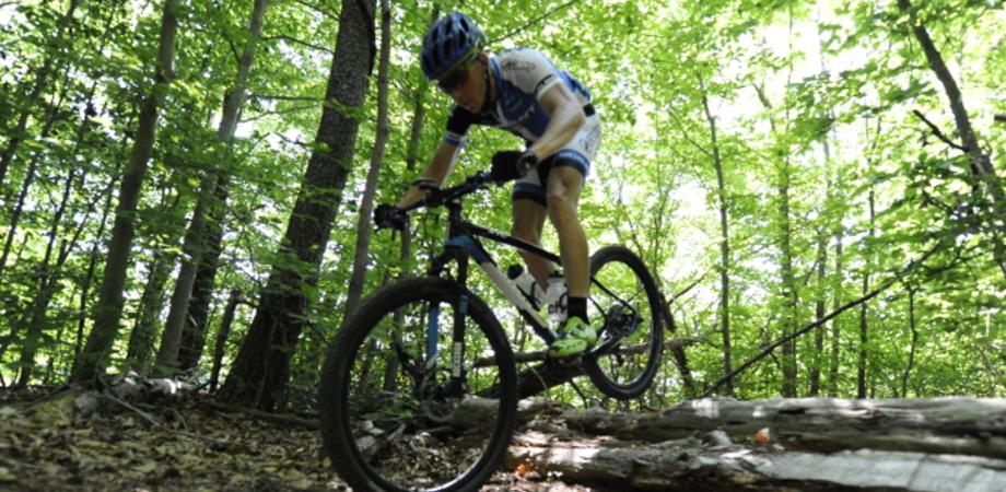 Nasce in Sicilia il Team Race Mountain: la direzione è affidata al nisseno Gerlando Scrofani