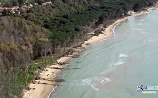 http://www.seguonews.it/eraclea-minoa-la-denuncia-di-mareamico-il-mare-ha-cancellato-una-delle-piu-belle-spiagge-siciliane-
