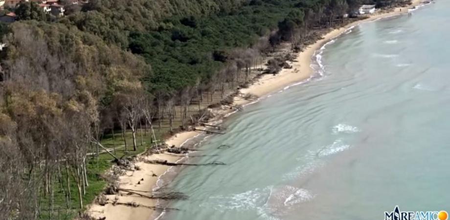 """Eraclea Minoa, la denuncia di Mareamico: """"Il mare ha cancellato una delle più belle spiagge siciliane"""""""
