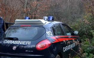 http://www.seguonews.it/santa-caterina-villarmosa-evade-dai-domiciliari-per-pascolare-il-bestiame-arrestato-