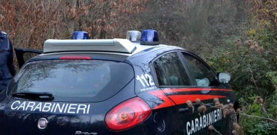 Santa Caterina Villarmosa, evade dai domiciliari per pascolare il bestiame: arrestato