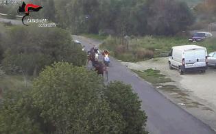 Caltanissetta, sette condanne per la corsa clandestina di cavalli organizzata lo scorso dicembre